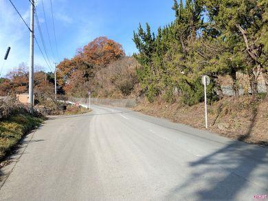旧道は草に覆われ、一見すると道に見えません