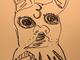 「画伯の腕は落ちてませんね」 草なぎ剛、初ブログに公開した愛犬のイラストで実力を遺憾なく発揮する