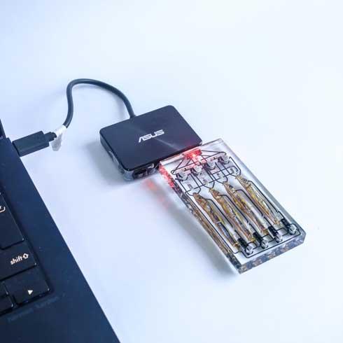 小魚 脳 4匹 接続 SF 設定 SSD型 USBメモリ ハンドメイド レジン