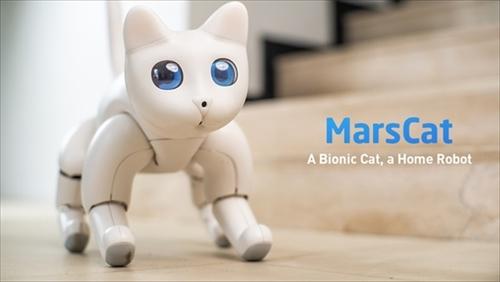 MarsCat