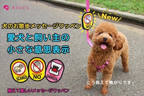 犬のお散歩メッセージワッペン