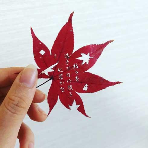 紅葉 葉っぱ 和歌 切り絵 作品 学生 修学旅行 秋 久保田万太郎 俳句 文字 金平糖