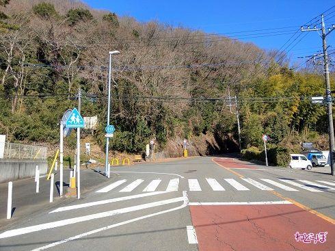 左側が県道515号だが、それを示すものはなにもない