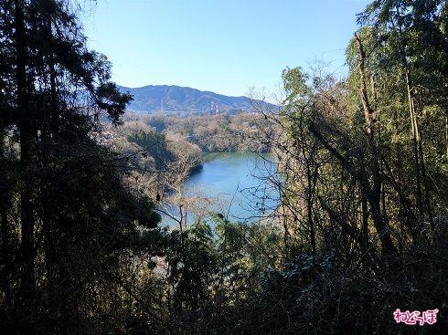 津久井湖が所々見えます。深い青色がきれい