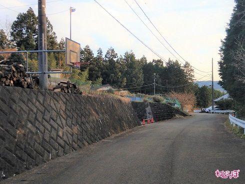 ゲートの先にはバスケットゴール。奥には民家が見えます