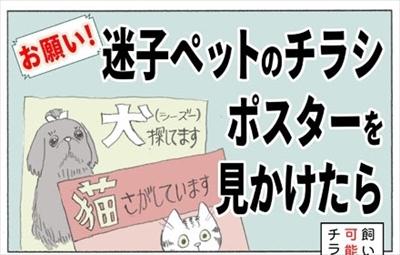 迷子ペットのポスターを見かけたら