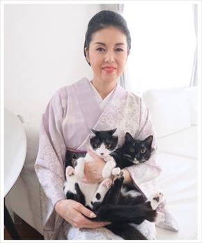 藤あや子 猫 スーパープレミアム猫の日 2月22日 マル オレオ ブログ Twitter