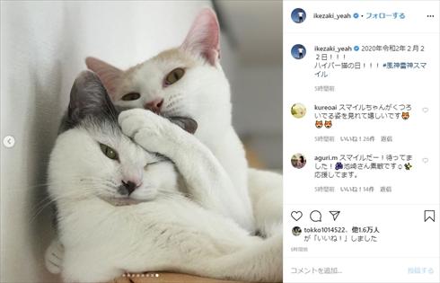 サンシャイン池崎 保護猫 風神 雷神 スーパープレミアム猫の日 2月22日 マル オレオ ブログ Twitter