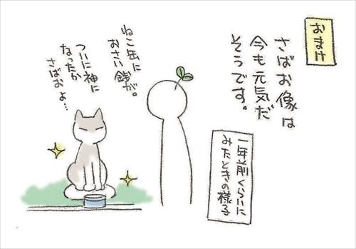 ムサ美の猫