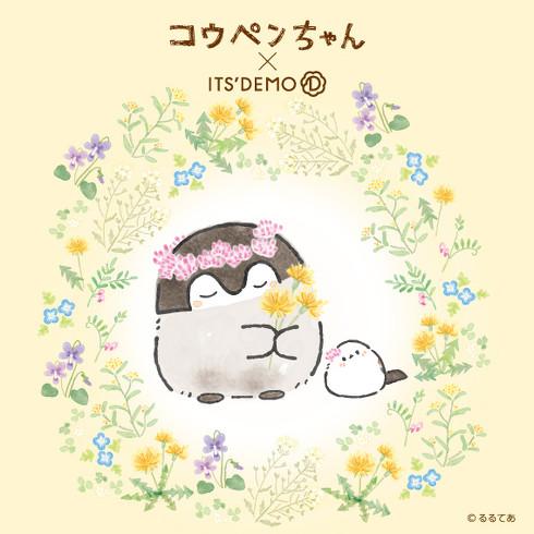ITS'DEMO × コウペンちゃん