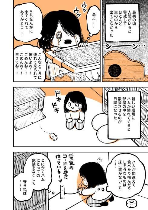 ハムスター 飼ってみて びっくり よじのぼる力 強い 漫画 園田ゆり