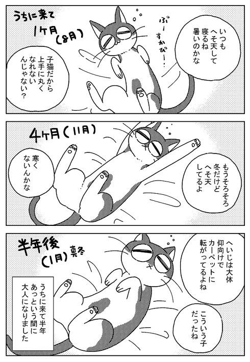 アシスタント時代 猫に心配された話 慰める 寄り添う 愛猫 漫画 若菜