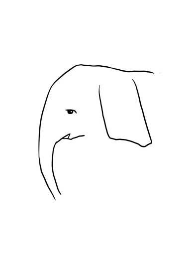 ワイルドモルモット イラスト 何を描いている 正解 絵