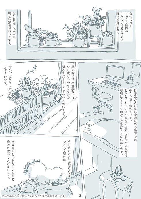 観葉植物と暮らす上で大切なたった2つのこと02