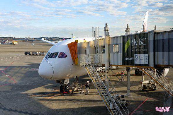 新型コロナ 航空会社 対応