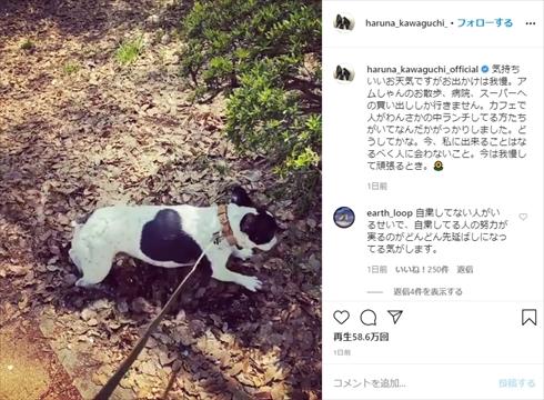 川口春奈 新型コロナウイルス インスタ 外出自粛 愛犬 散歩