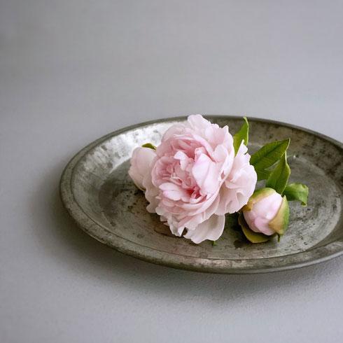 シュガーペースト 芍薬 シュガークラフト お菓子 ケーキ ROSEPETAL 星野 彰子