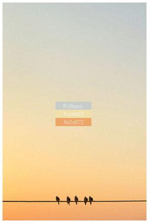 カラーコードの空