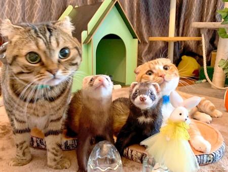 楽しいおもちゃに囲まれて