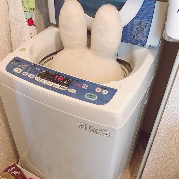 ミッフィー ぬいぐるみ 2L 洗濯 夫 やり方 分からない