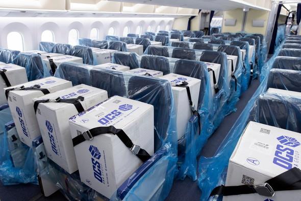 ANA 旅客便 座席 貨物輸送