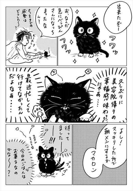 生まれ変わって猫になった話