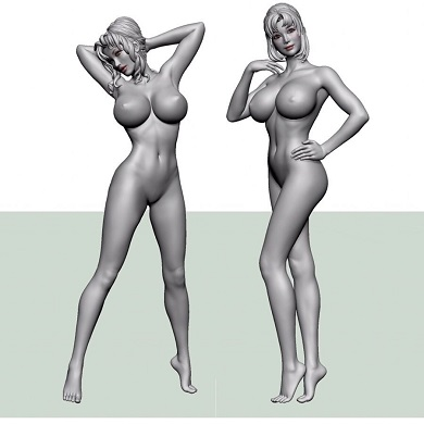 叶姉妹 フィギュア 3D