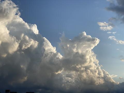 わんこにゃんこ雲