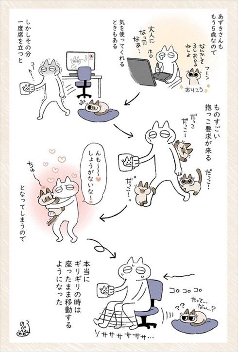 猫のあずきさん