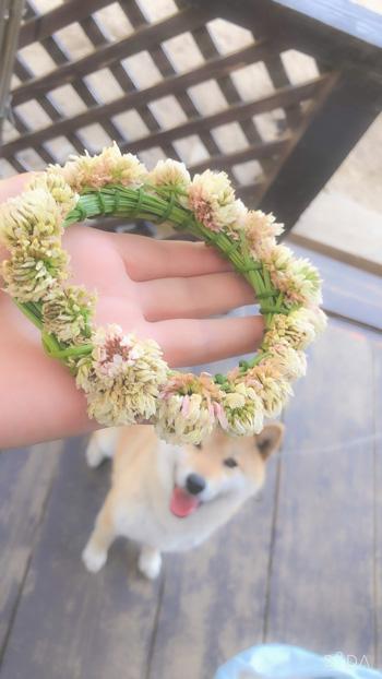 花冠そらさん1