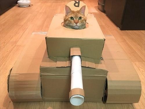 戦車に乗る猫ちゃん