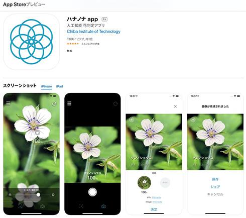 名もなき花の名前を教えてくれる無料アプリ「ハナノナ」で散歩がはかどりそう