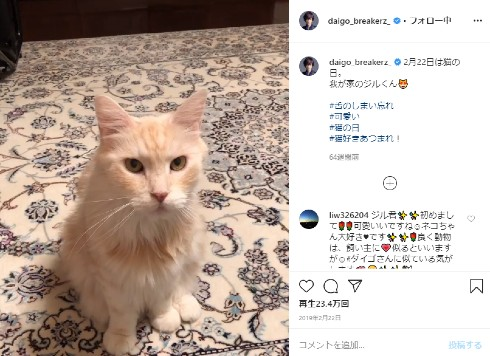 DAIGO 北川景子 ブログ インスタ 猫 ジル