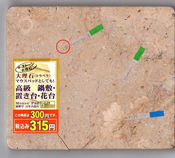 100均 マウスパッド 化石 ヌムリテス サンゴ ダイソー