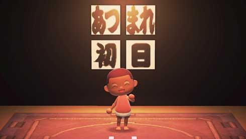 日本相撲協会 あつ森 あつまれ どうぶつの森 マイデザイン 公開 あつまれ大相撲