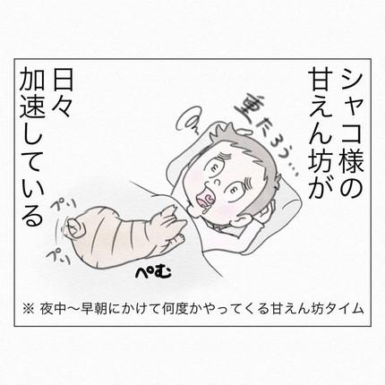 甘えん坊が加速するシャコちゃん