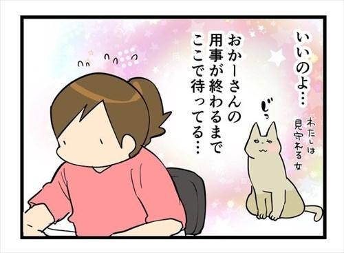 辛抱強い猫