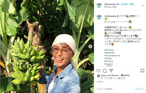 田中律子 沖縄 バナナ