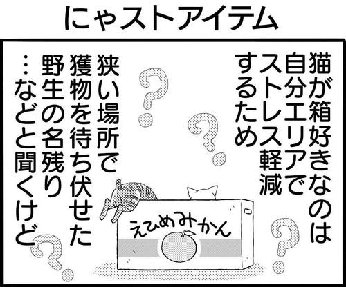にゃストアイテム