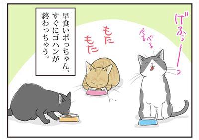 早食い猫ちゃん