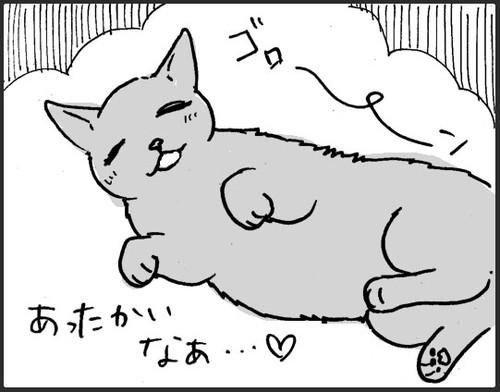 お風呂お先にするネコちゃん