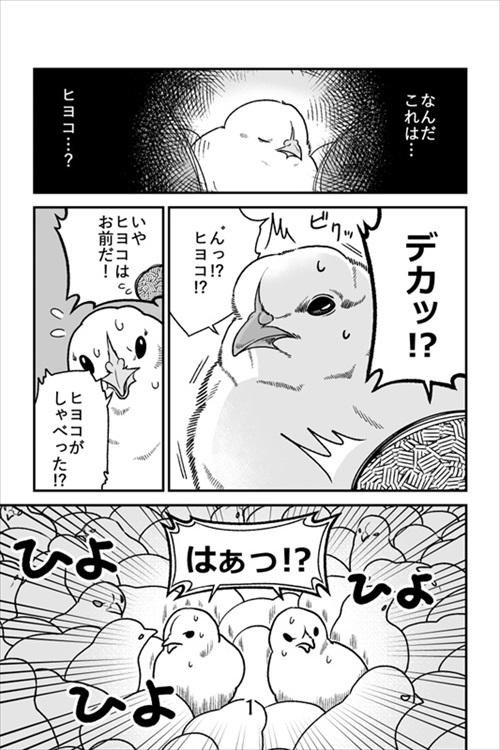 ヒヨコ漫画