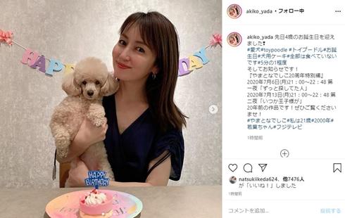 矢田亜希子 ペット 誕生日 きなこ もなか