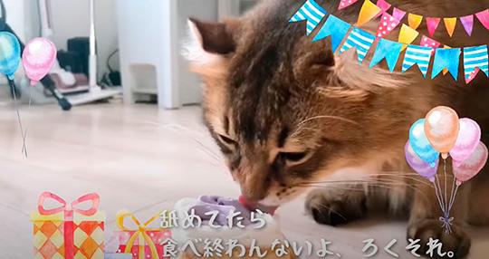 Maikoさん