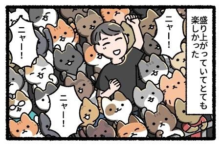 猫のライブ
