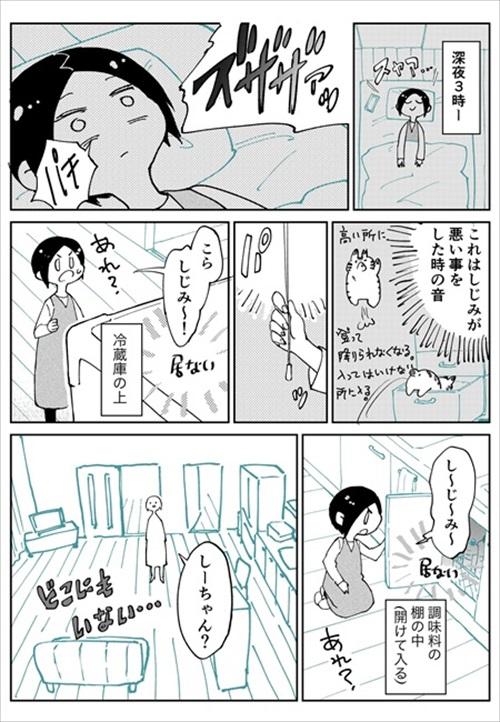 3本足のしじみちゃん近況