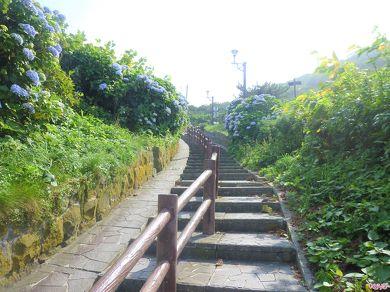 階段国道を振り返って見る