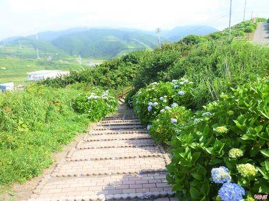 階段村道の様子