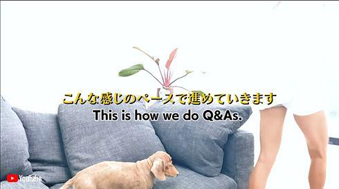 ローラ ROLA キス 彼氏 恋人 恋愛 結婚 愛犬 モカ 犬 YouTube