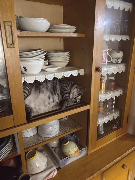 食器棚の左から